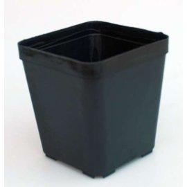 Square pots 11 x 11 x 12 cm