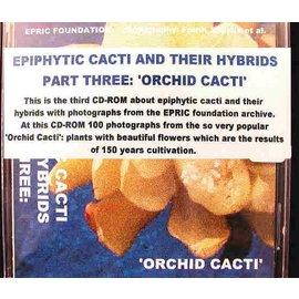 Epiphytische Kakteen Teil 3