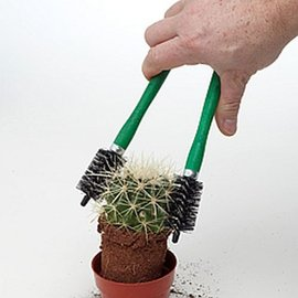 Cactus pinzas de agarre pequeña