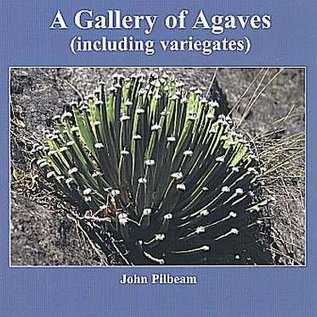 A Gallery of Agaves (including variegates) John Pilbeam