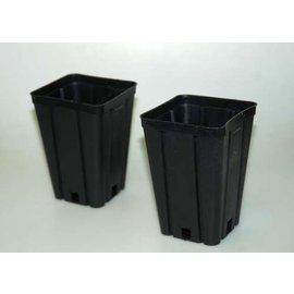 Viereck-Container-Töpfe hoch 9 x 9 x 13 cm