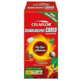 Celaflor® libre de plagas CAREO® concentrado