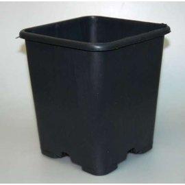 Conteneur carré pots hauts 18 x 18 x 23 cm