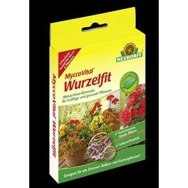 Mycco Vital Wurzelfit