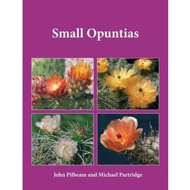 Small Opuntias Pilbeam und Partridge