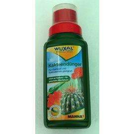 Wuxal fertilizantes cactus
