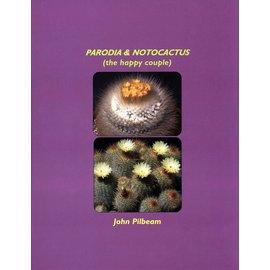 Parodia y Notocactus