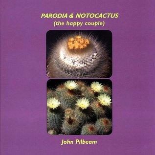 Parodia & Notocactus