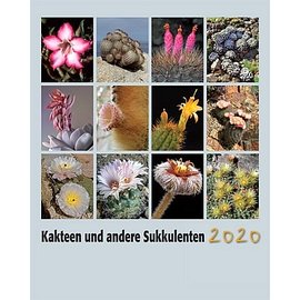 Kakteen und Sukkulenten Kalender 2020