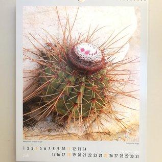 Cactus e altri succulenti calendari 2021 - KuaS Kalender