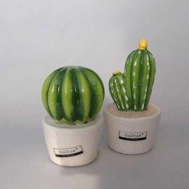 Cactus decoration figures