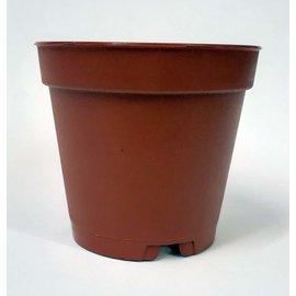 Round pot 5.5 x 5 cm