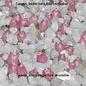 Ferocactus rectispinus (Rancho Canipolé) x chrysacanthus (Isla Cedros)       (Samen)
