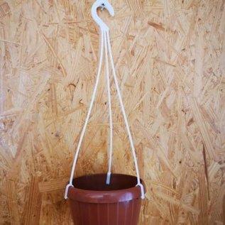 Hanging basket 12 cm
