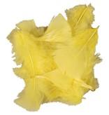 Kalkoen donsveren geel