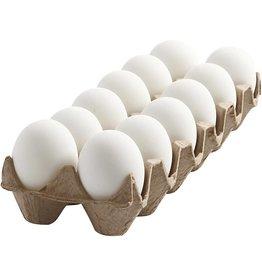 Eieren wit plastiek effen