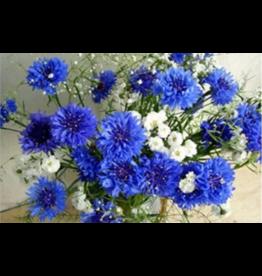 Diamond Painting: Blauw met witte bloemen