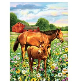 Verven op nummer paard groot