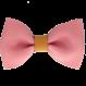 Your Little Miss Haarspang Rose & Leder