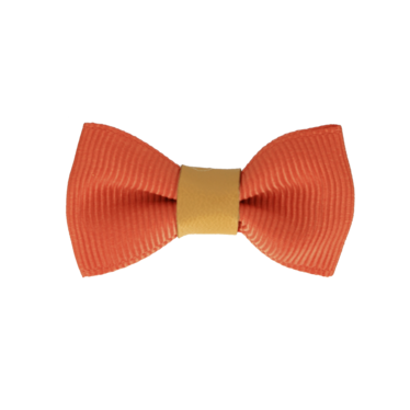 Your Little Miss Baby hair clip mandarin & leather