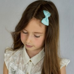 Your Little Miss Hair clip mineral ice
