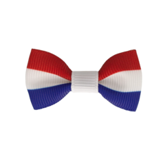 Your Little Miss Baby hair clip Dutch flag