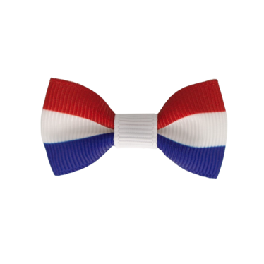 Your Little Miss Baby haarspeldje Nederlandse vlag