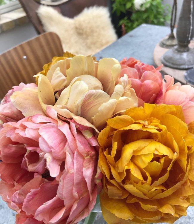Mélange de tulipe Aunt Green