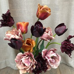 Tulpen Mischung Esthers Favourites