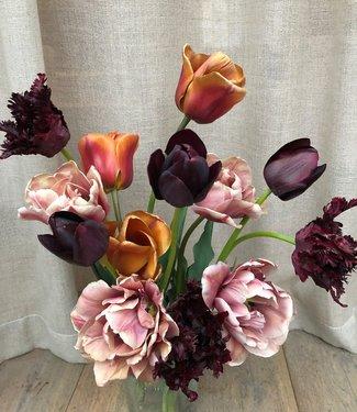 Mélange de tulipes Esthers Favourites