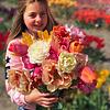 Микс тюльпанов Olivia's Dream