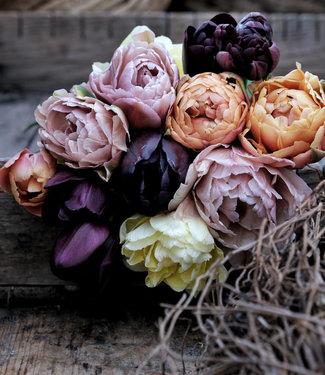 Mélange de tulipes Linda's Vintage