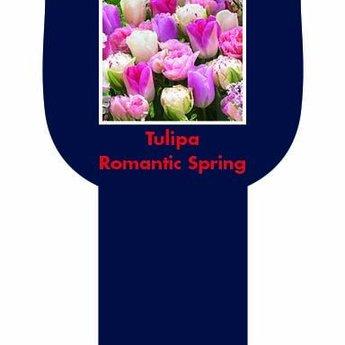 Romantic Spring Gift Box