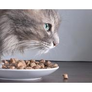 Blik kattenvoer