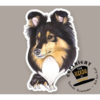 Heads Shetland Sheepdog (tricolor)