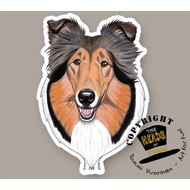Heads Collie Sable