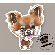 Heads Chihuahua (langharig)