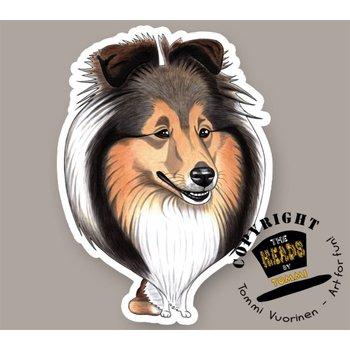 Heads Shetland Sheepdog (Sheltie)