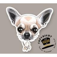 Heads Chihuahua