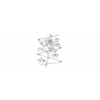 Green Plant Geleider-schroef Rvs Trellis
