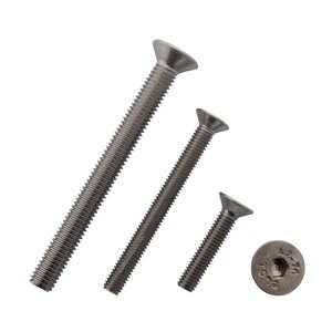 stainless sunk head screw