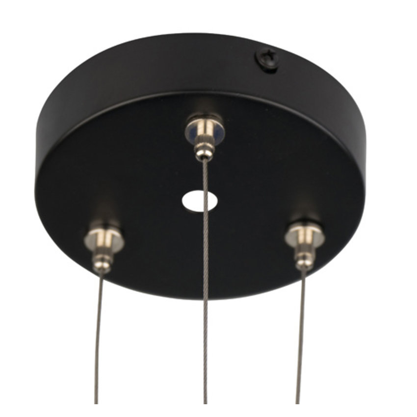 Plafondkap - Lamprozet zwart
