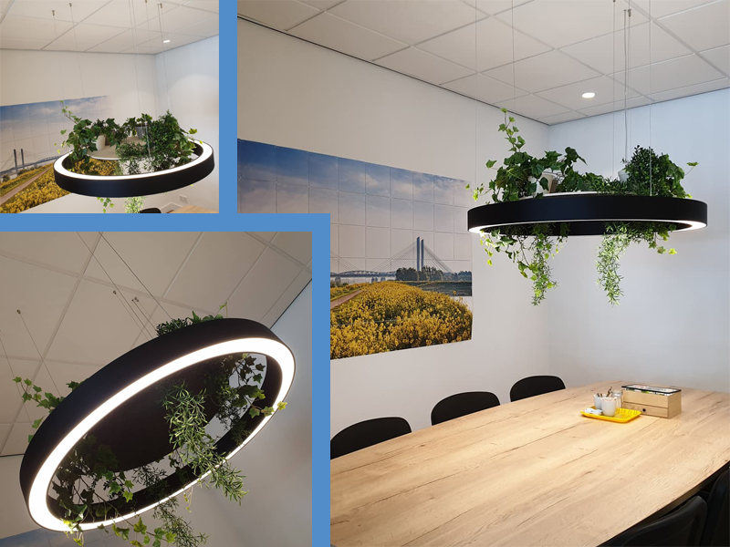 Margreet verlichtte en vergroende de kantoorruimte