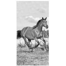 Paarden Strandlaken Zwart Wit