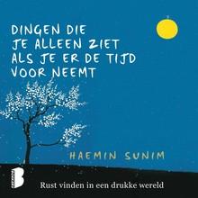 Haenim Sunim Dingen die je alleen ziet als je er de tijd voor neemt - Rust vinden in een drukke wereld