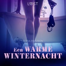 Sofia Fritzson Een warme winternacht - erotisch verhaal