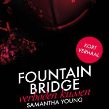 Samantha Young Fountain Bridge - Verboden Kussen