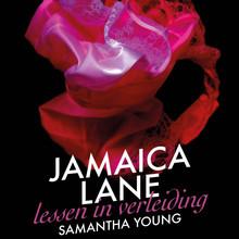 Samantha Young Jamaica Lane - Lessen in verleiding