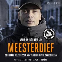 Wilson Boldewijn Meesterdief - De bizarre belevenissen van Van Gogh rover Okkie Durham