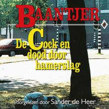 Baantjer De Cock en dood door hamerslag (deel 53)